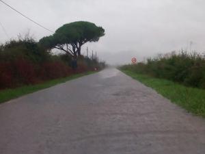 strada bozzone_Donatella Cittadini